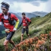 Gore-tex Transalpine Run 2015; The Countdown is On