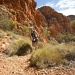 Journeys Made, Lives Changed at Run Larapinta Stage Race