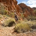 Incredible Times Ahead at Run Larapinta Stage Race
