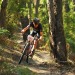 Entries Open; An Endless Summer of  Marathon Mountain Biking and Gravel Grinding
