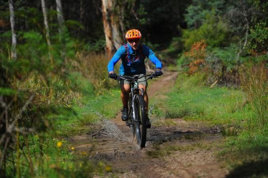Riding at the Bike Buller Festival