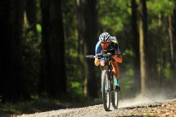 Riding at the Great Otway Gravel Grind