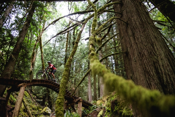 f1a7937f033 SleepMonsters Adventure Racing Reports - BC Bike Race - This Year's ...