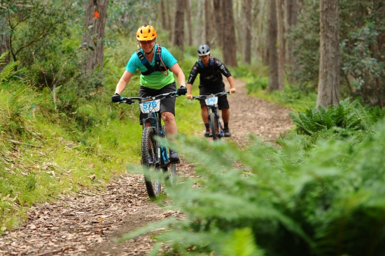 Riding the Bike Buller Trails