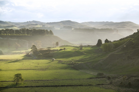 The Hawke's Bay region will host the new Geoquest New Zealand